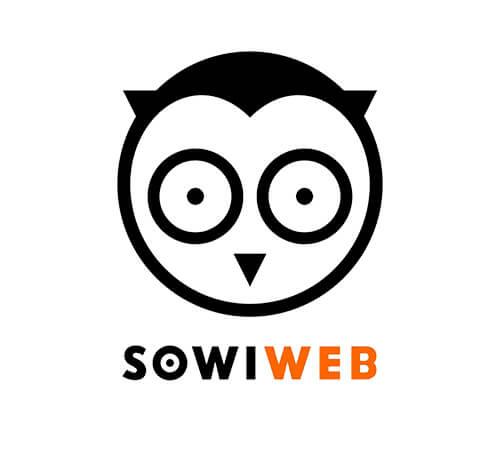 SowiWeb